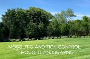 mosquito-and-tick-control